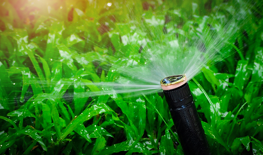 How to Conserve Water at Home to Save Money