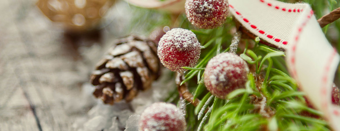 Holiday Decorating with Natural Themes