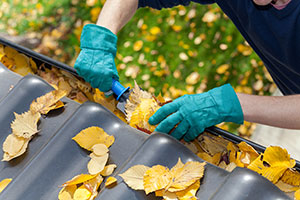 cleaning leaves from gutters
