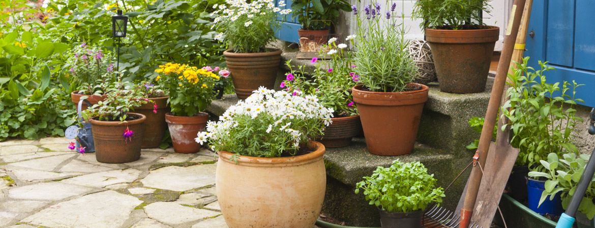 Ideas For A Beautiful Container Garden