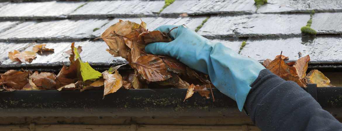 Protect Your Home with Clean and Efficient Gutters
